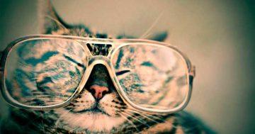 7 dicas para se adaptar bem (e rápido) a óculos multifocais